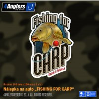 4Anglers Design nálepka Fishing For Carp 105x160mm